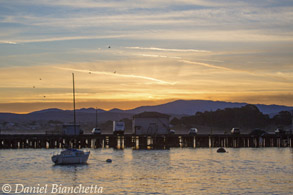 Monterey Harbor at sunrise, photo by Daniel Bianchetta